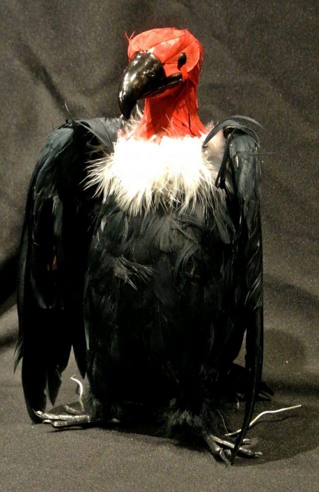 Halloween Condor